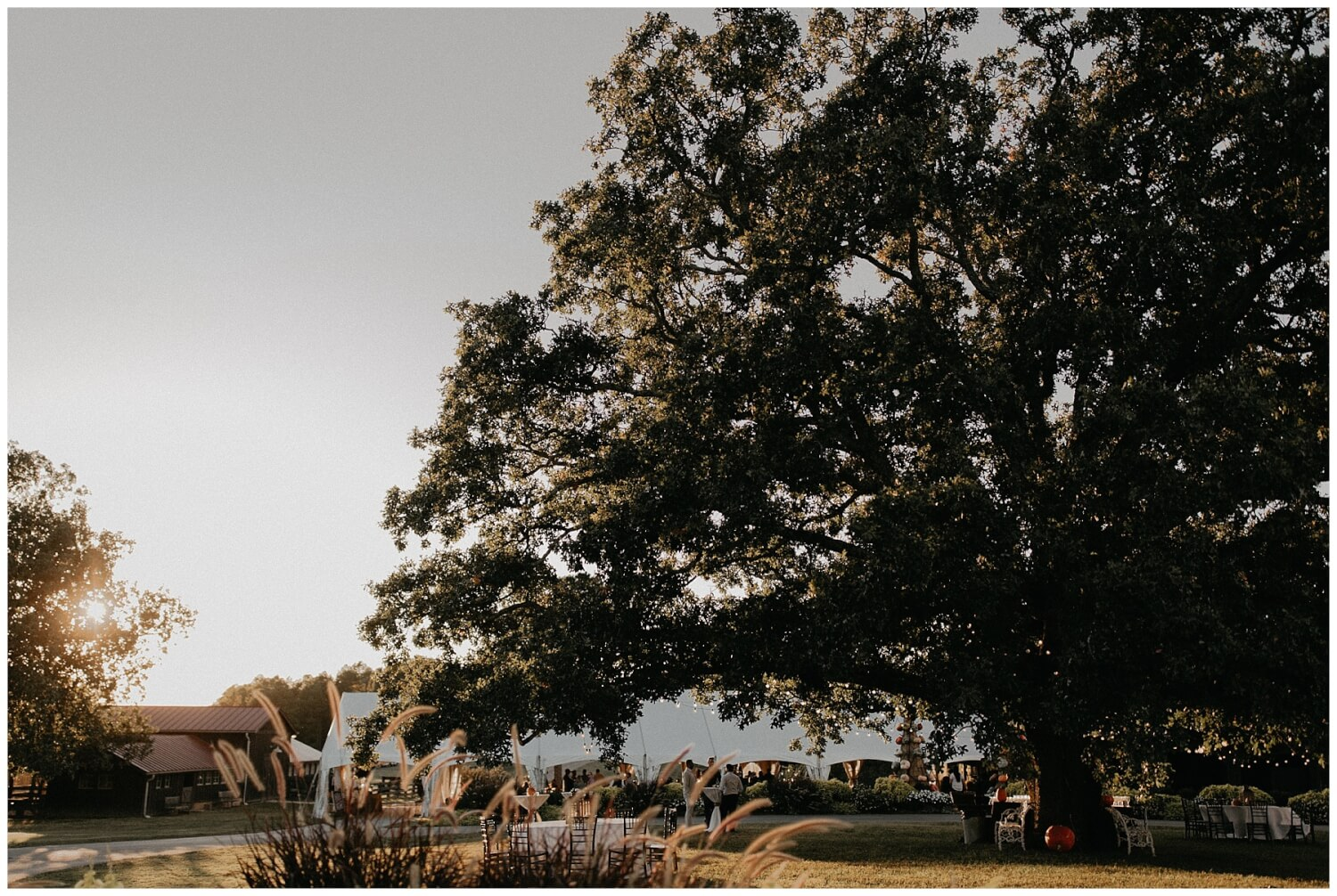 Moss mountain farm wedding