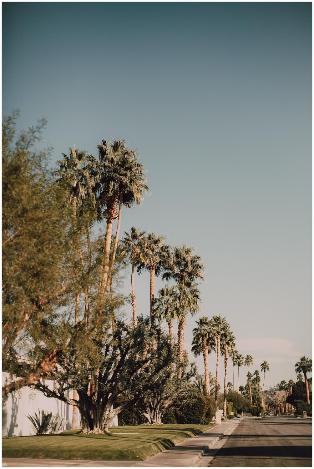 Palm Springs Photography